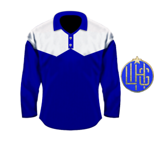 Torfs Team Dinamo 1949 blue.png