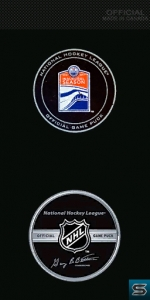 NHL puck.jpg