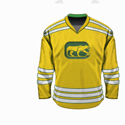 Torfs Chicago Cougars 72-73yel.png