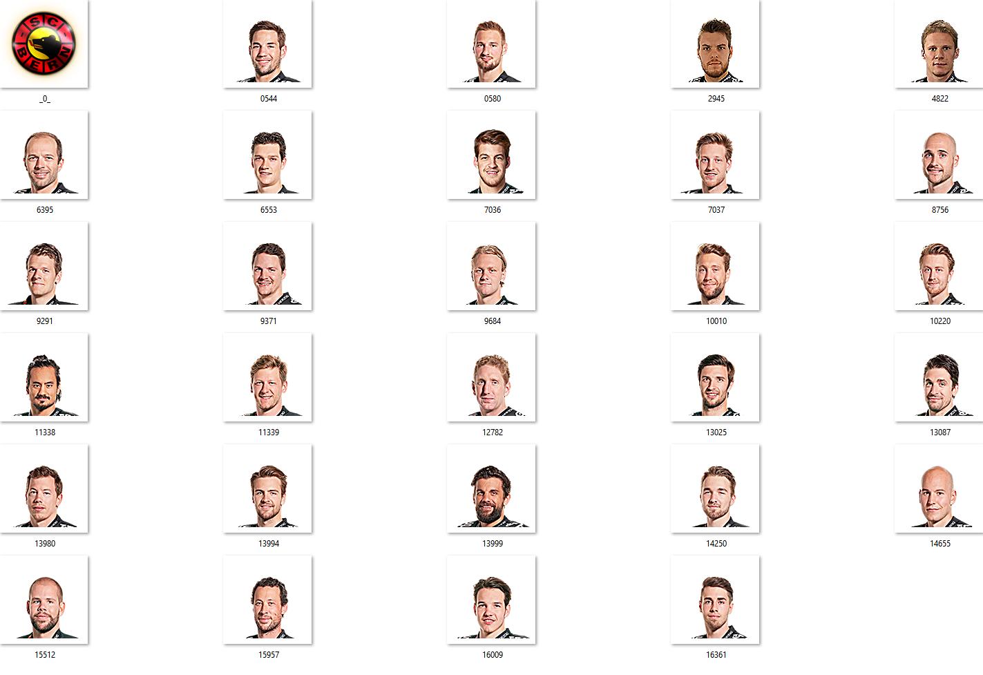 SC Bern Facepack 2017-2018