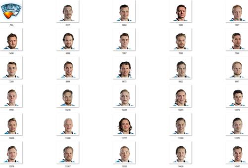 Скриншот для Pelicans Facepack 2017-2018