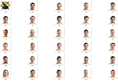 Скриншот для SaiPa Facepack 2017-2018