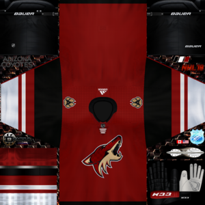 Arizona Coyotes 2017-2018 home.png