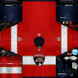 Florida Panthers 2017-2018 home.png