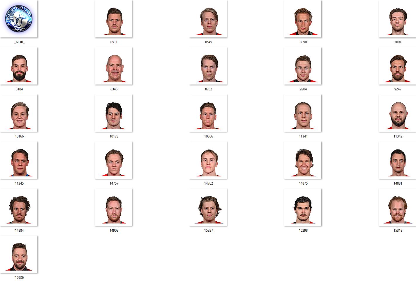 IIHF 2018 NOR Facepack