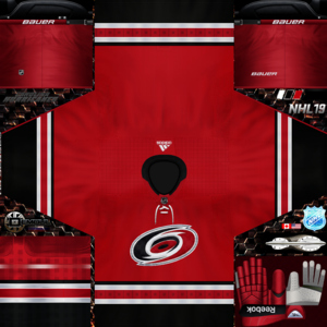 Carolina Hurricanes 2019 (home).png